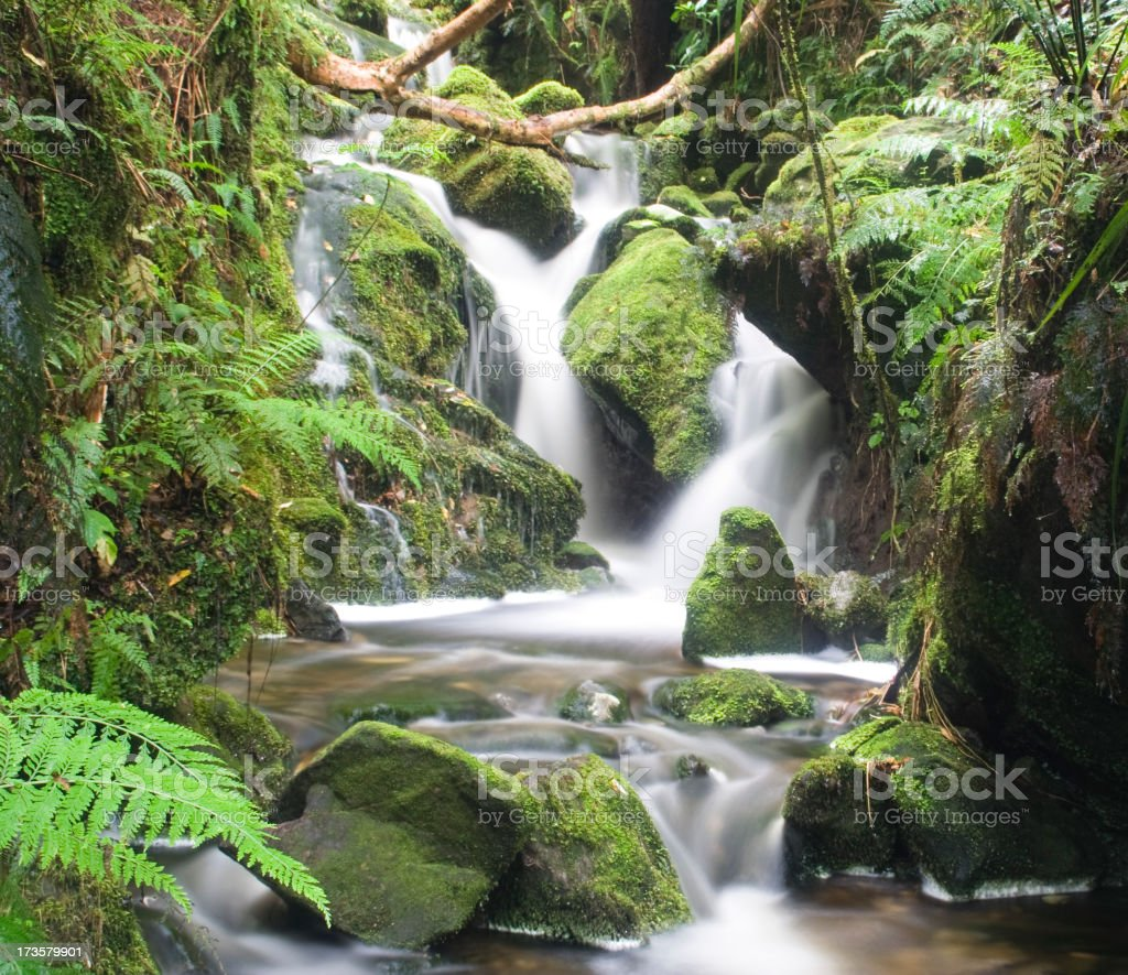 Waterfall in New Zealand royalty-free stock photo