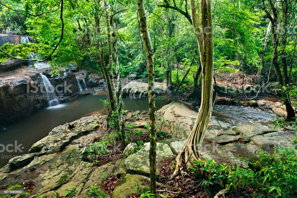 waterfall in Pang Sida national park  , Thailand stock photo