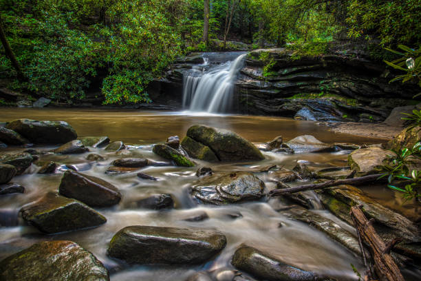 Waterfall in Table Rock State Park near Greenville South Carolina Carrick Creek Falls in Table Rock State Park near Greenville, South Carolina SC and the Blue Ridge Mountains. liberty bridge budapest stock pictures, royalty-free photos & images