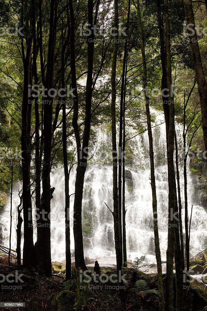 Waterfall in Tasmania stock photo