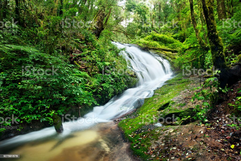 waterfall in thai national park. In the deep forest. stock photo