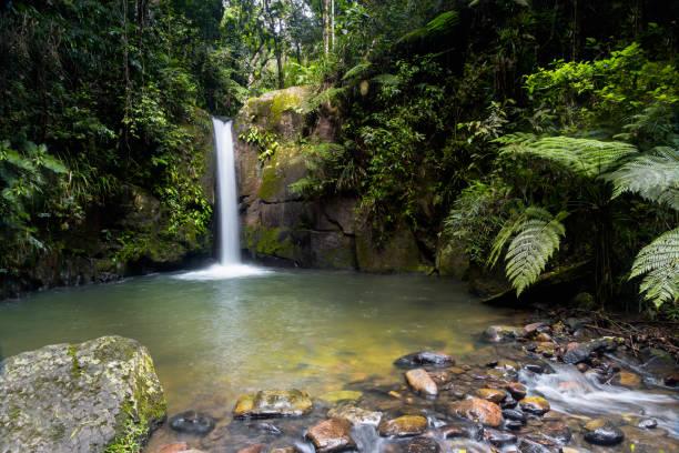 Wasserfall im brasilianischen Regenwald – Foto