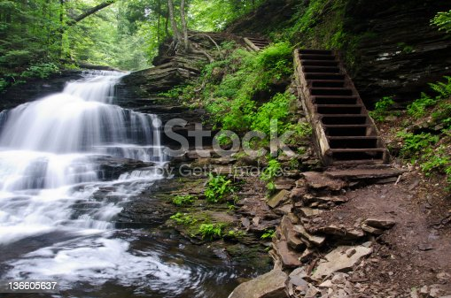 istock Waterfall in the Forest 136605637