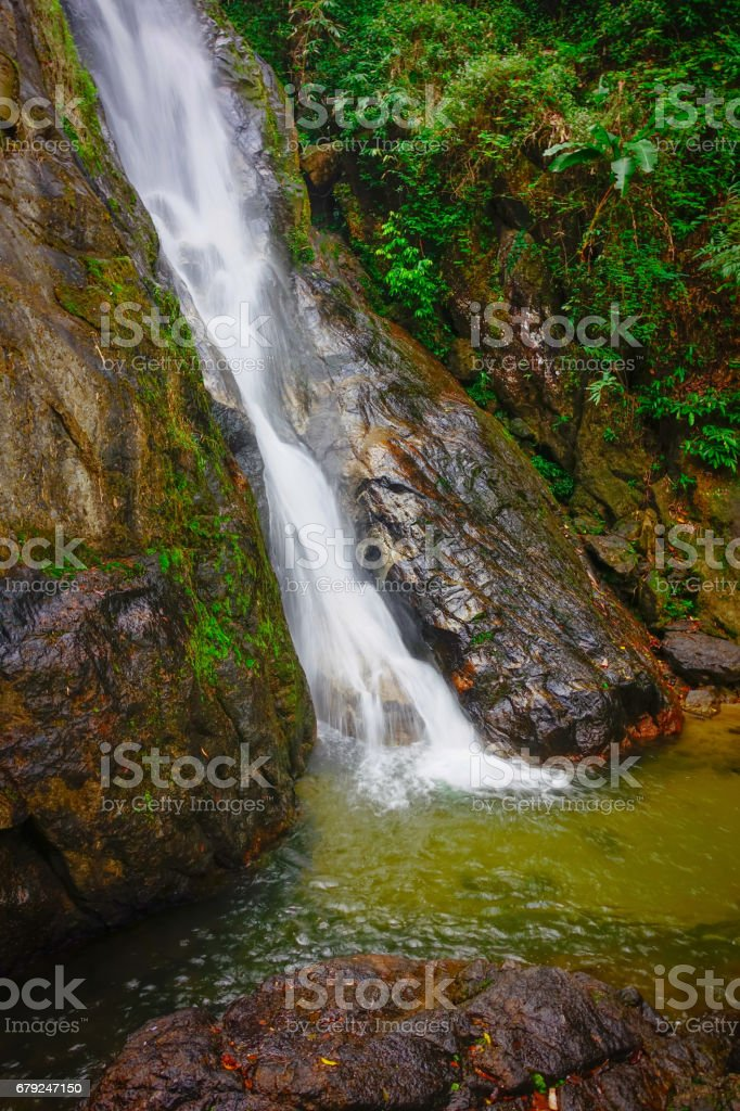 waterfall in the fresh green forest photo libre de droits