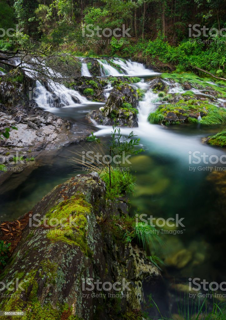 Waterfall in the middle of the forest 免版稅 stock photo