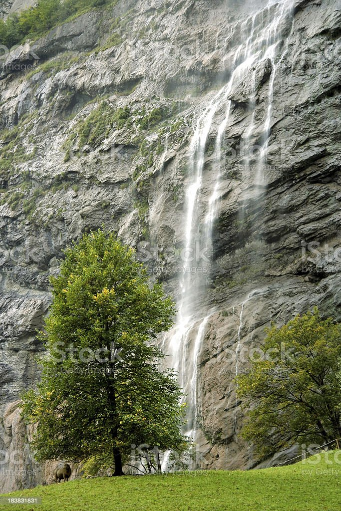 Waterfall in the Swiss Alps royalty-free stock photo