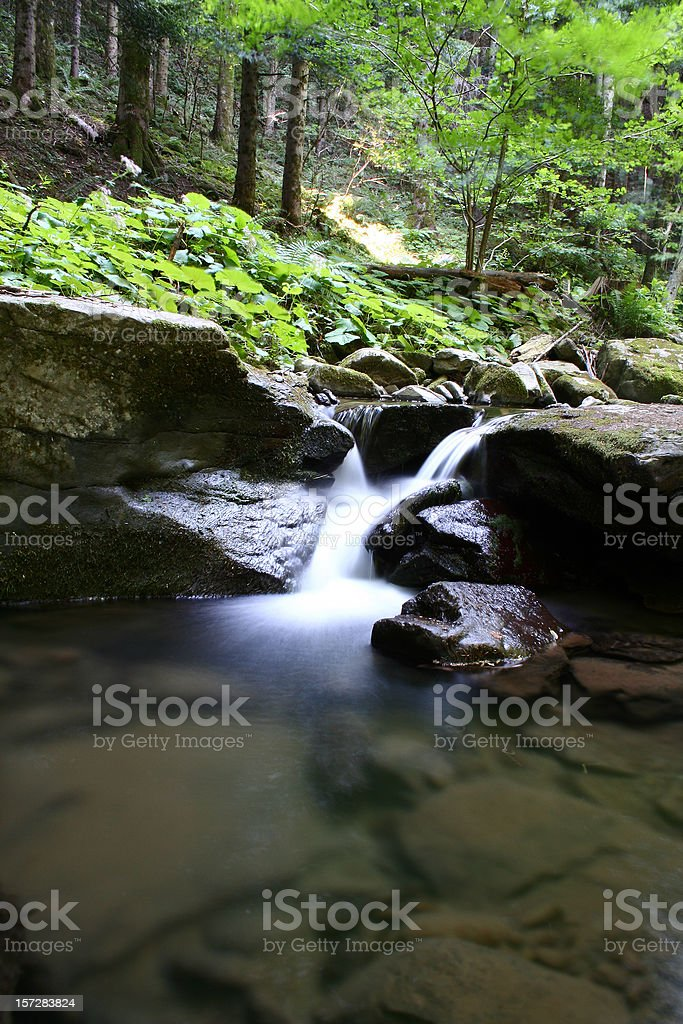 Waterfall in the wood royalty-free stock photo