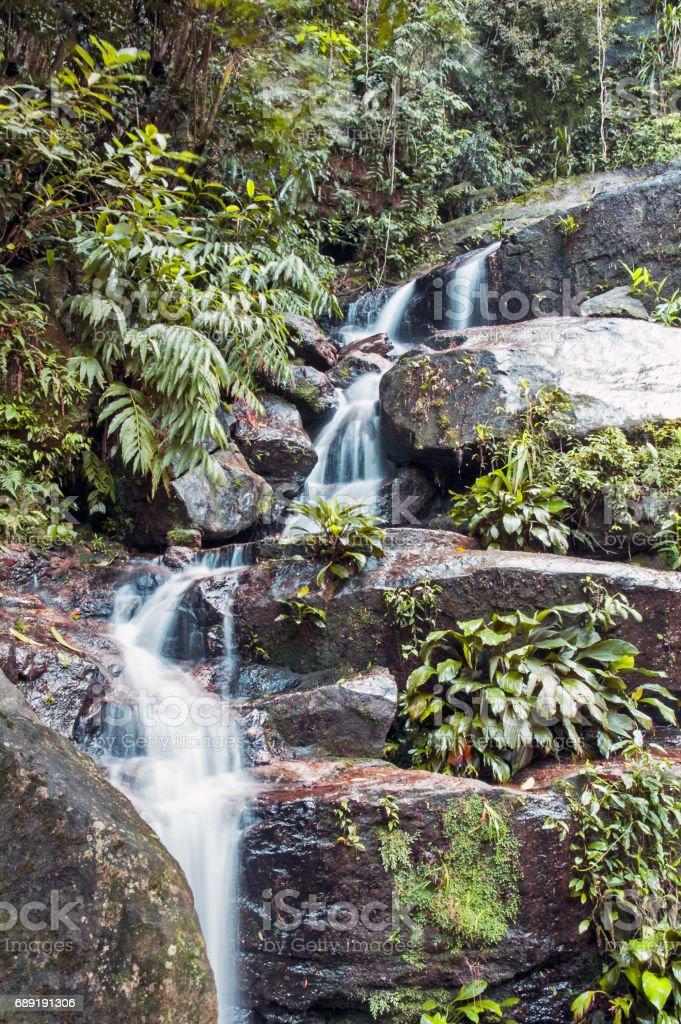 Waterfall in Tijuca park in Rio stock photo