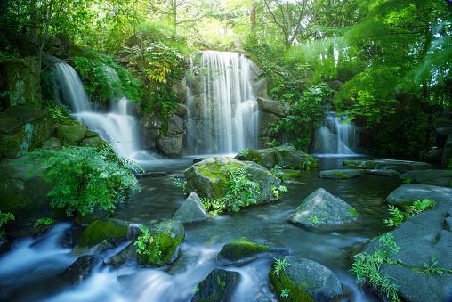 Waterfall in Tokyo