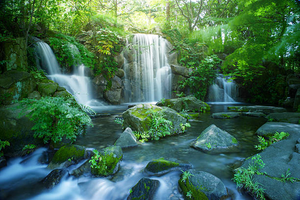 waterfall in tokyo - waterfall stock photos and pictures