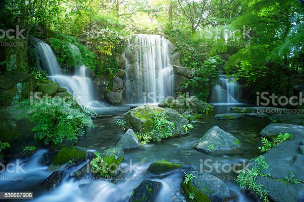 Photo of Waterfall in Tokyo