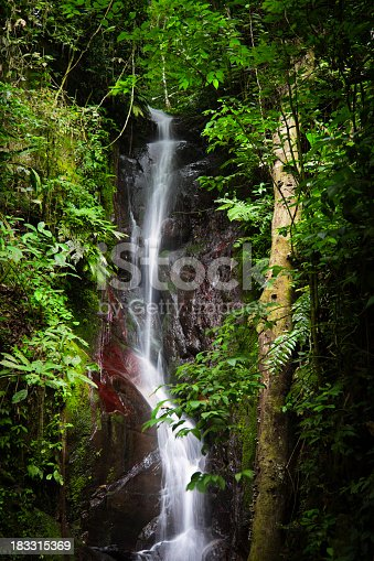 istock Waterfall in tropical rain forest at Henry Pittier National Park 183315369