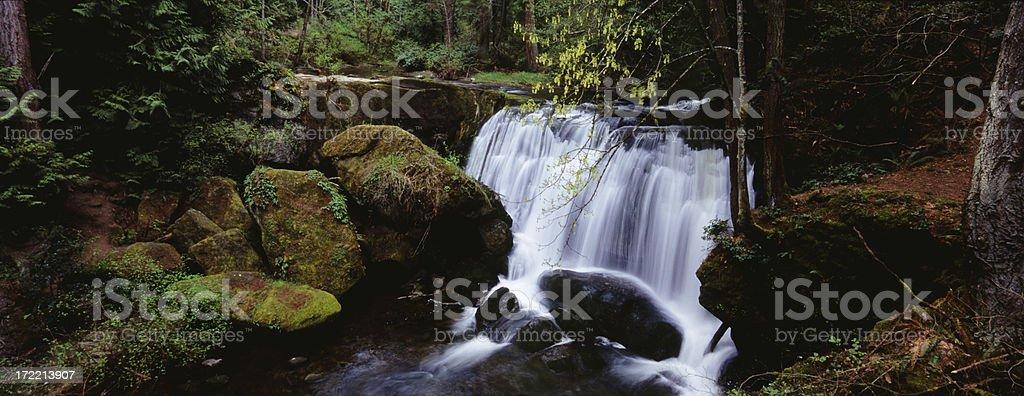Waterfall in Washington stock photo
