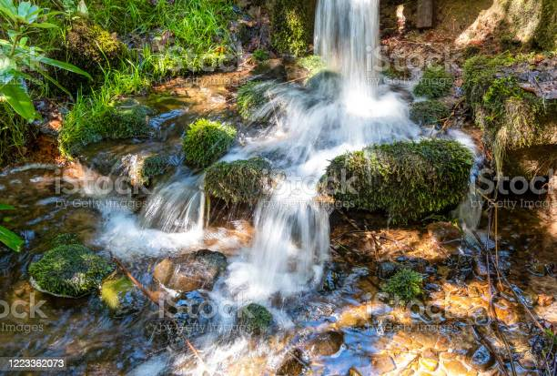 Photo of Waterfall into a woodland stream