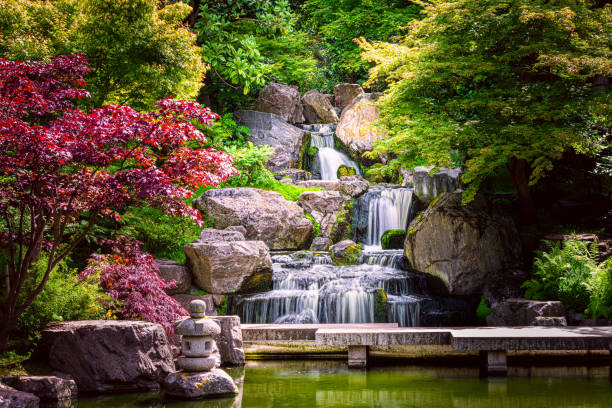 Waterfall long exposure with maple trees and bridge in Kyoto Japanese green Garden in Holland Park green summer zen lake pond water in London, UK stock photo