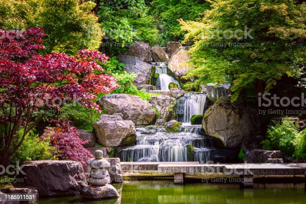 Photo of Waterfall long exposure with maple trees and bridge in Kyoto Japanese green Garden in Holland Park green summer zen lake pond water in London, UK