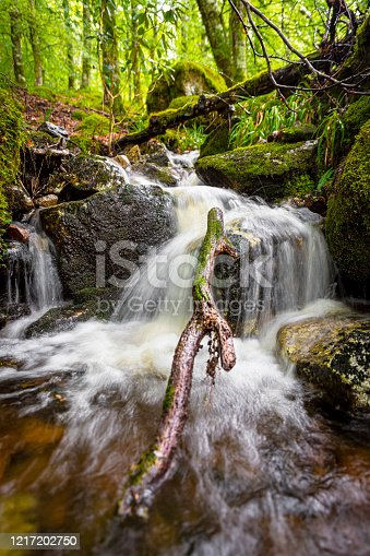 River with a fallen tree photographed with long exposure to get a tranquil dreamy image