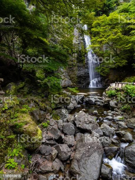 Photo of Waterfall of Minoh
