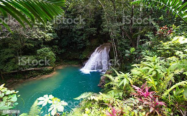 Waterfall of the blue hole jamaica picture id518020918?b=1&k=6&m=518020918&s=612x612&h=ba643y0mre35fysun3ee69josa922b2y92h3 jehzdq=
