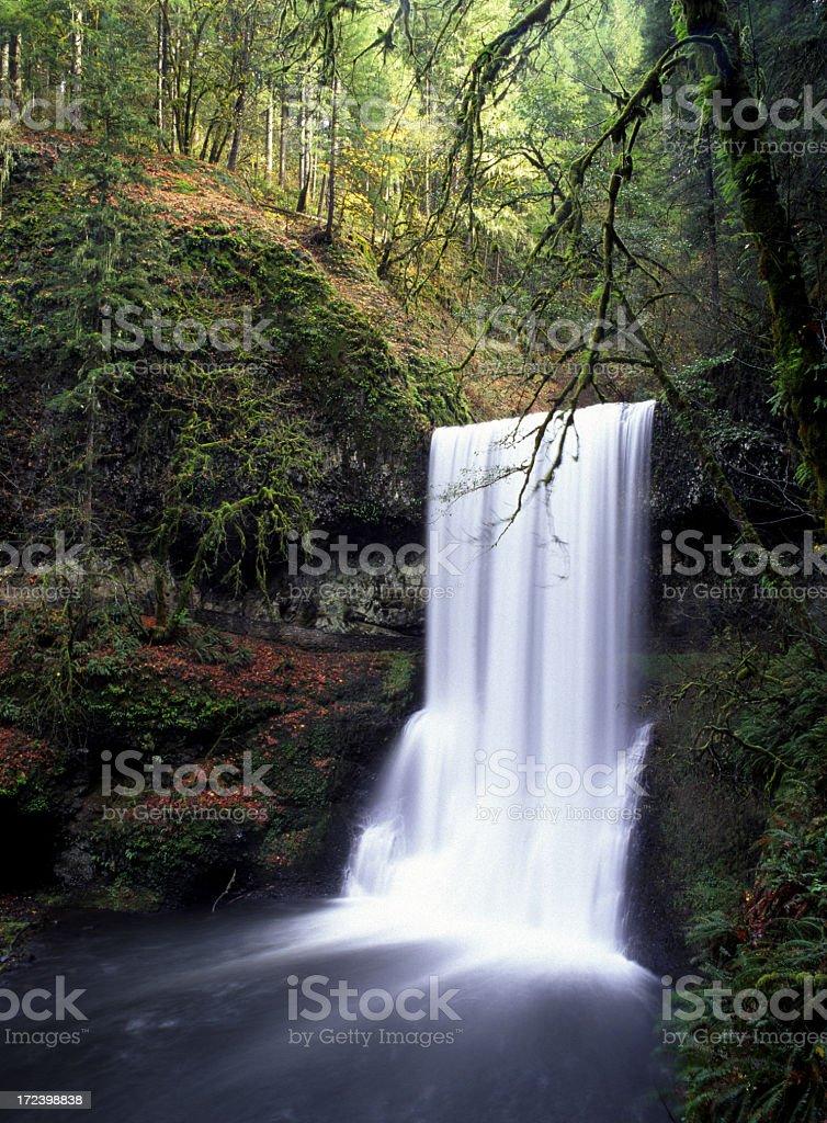 Waterfall on the Silver Falls Loop, Oregon stock photo