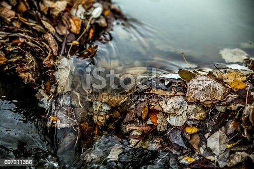 water stream over Autumn leaves