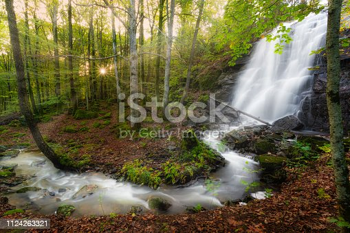 Waterfall with a mushroom in front photographed with long exposure to get a tranquil dreamy image,