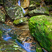 Water flowing over rapids and rocks of forest.adobe rgb 1998 use.