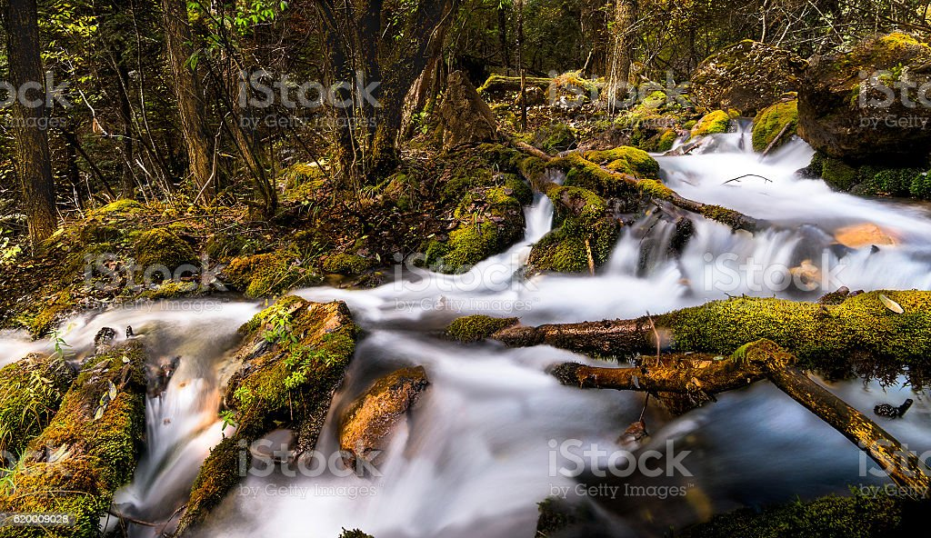 Cascata foto de stock royalty-free