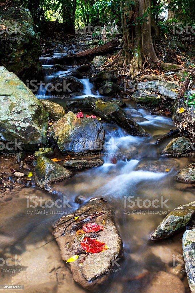 Waterfall running natural stock photo