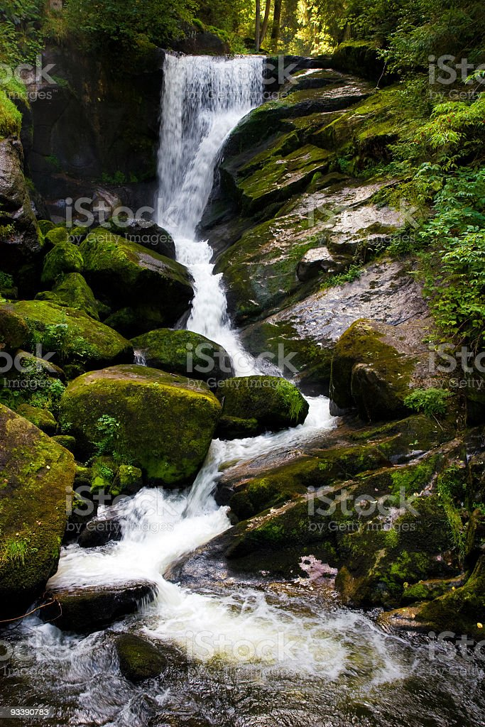 Waterfall scene royalty-free stock photo