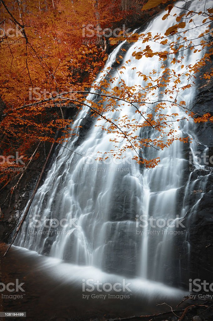 Waterfall Surrounded by Autumn Trees royalty-free stock photo