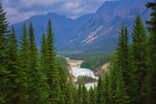 Waterfall surrounded by nature and wildlife. Rocky mountain ( Canadian Rockies ). Near the city of Calgary. Portrait, fine art. Jasper and Banff National Park, Alberta, Canada: August 3, 2018 stock photo