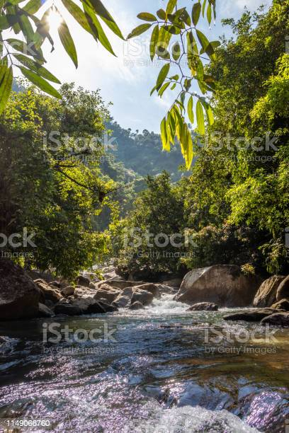 Photo of Waterfall water flow in rocks with green forests