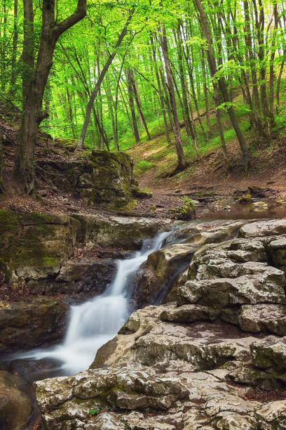Waterfall with blurred water stream photographed using long exposure stock photo