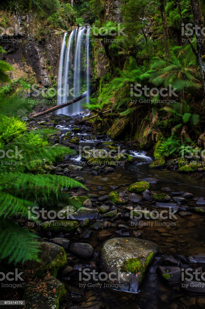 Waterfall with ferns and rocks in a flowing creek. Vertical format landscape. stock photo