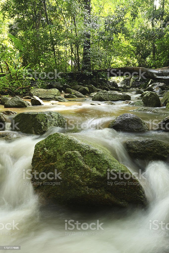 Waterfall with lush royalty-free stock photo