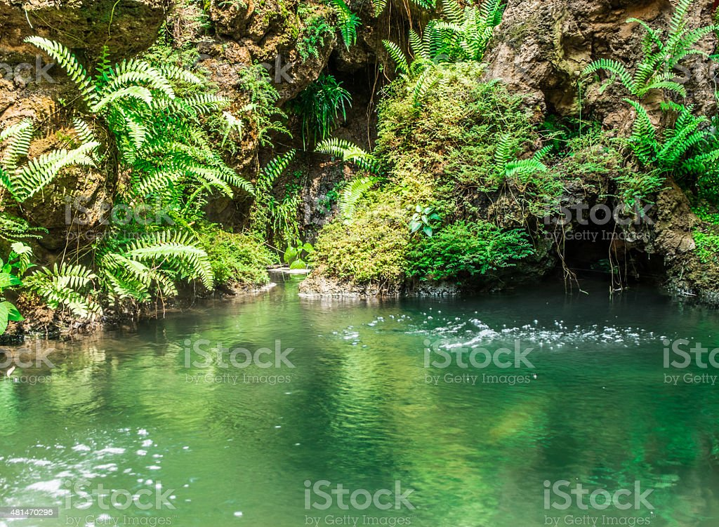 Waterfall With Pond In Garden Royalty Free Stock Photo