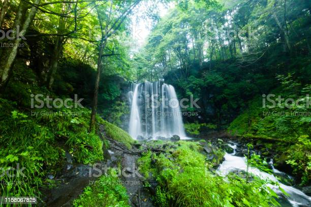 Photo of Waterfalls And Mountain Stream In The Forest