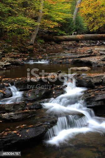 Water cascade in Ricketts Glen State Park, Pennsylvania, USA