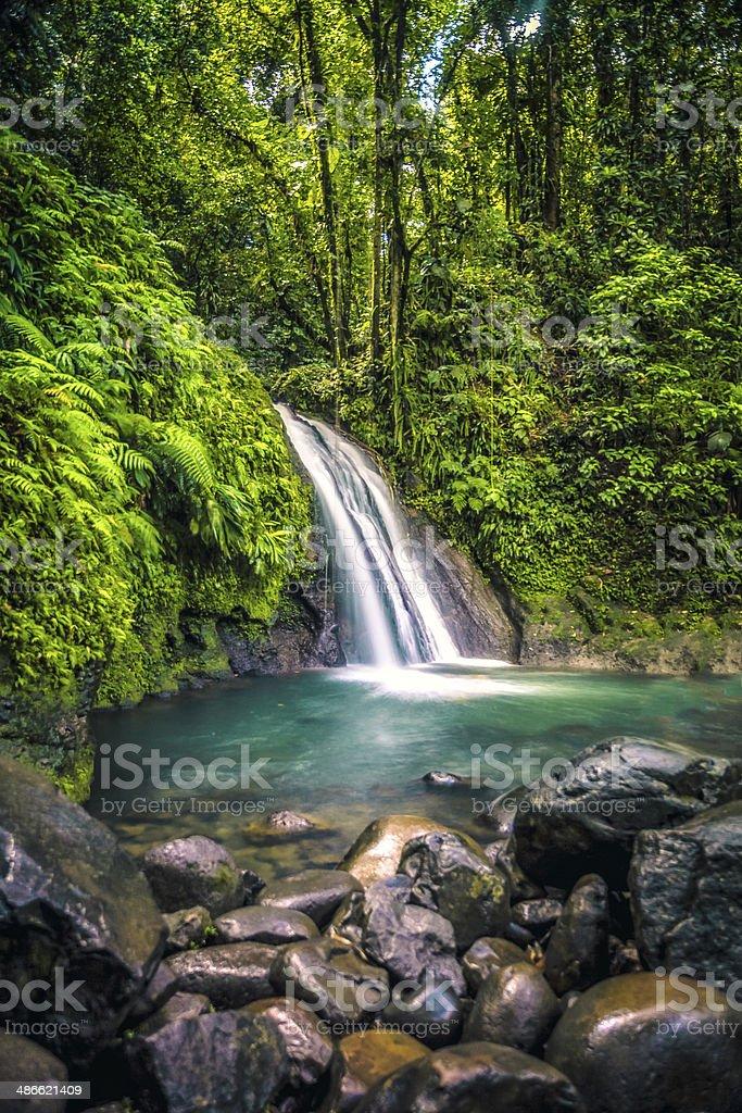 Waterfalls In Caribbean Rainforest royalty-free stock photo