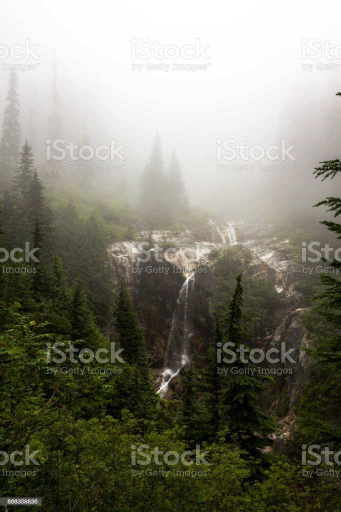 Waterfalls in Forest Surrounded by Fog stock photo