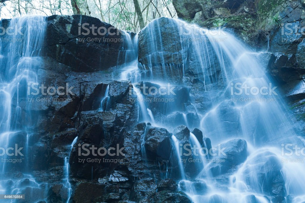 Waterfalls in the Forest stock photo