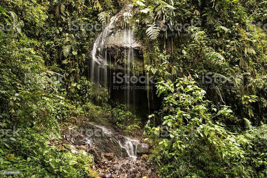 Waterfalls of the tropical rainforest in Mindo, Ecuador stock photo