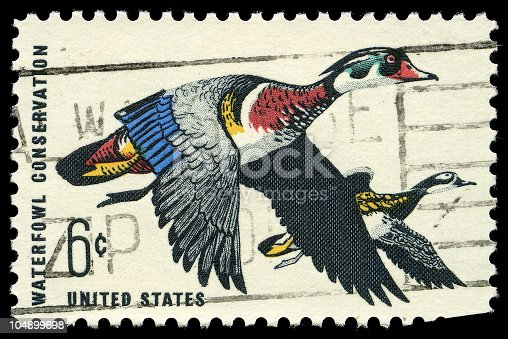 Waterfowl Conservation Issue Stamp of 1968