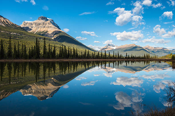 Waterfowl Lake, Banff National Park, Alberta, Canada Beautiful mountain reflection in Waterfowl lake lake waterfowl stock pictures, royalty-free photos & images