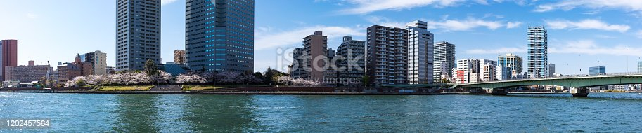 660303034 istock photo Waterfront and cherry blossom landscape14 1202457564