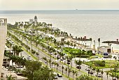 Jeddah waterfront park in the daylight with palm trees lined up in the street.
