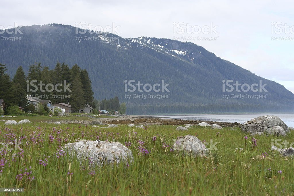 Waterfront Homes Near Petersburg Alaska stock photo