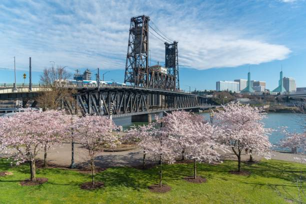Waterfront Park in Portland Oregon on spring afternoon stock photo