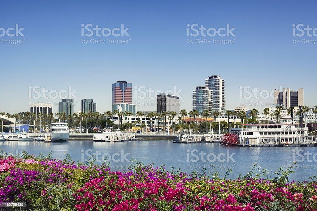 Waterfront skyline of Long Beach, California royalty-free stock photo